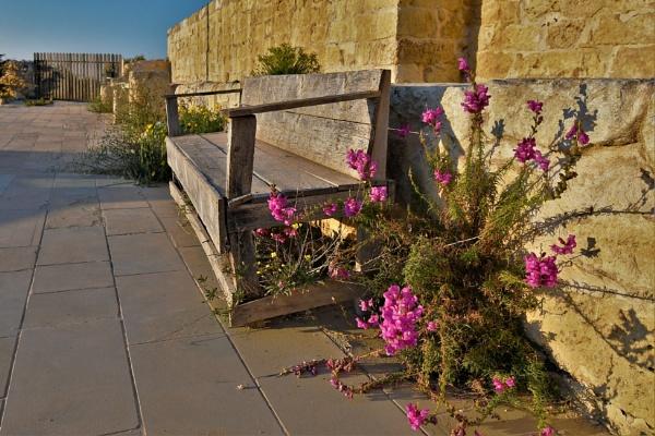 Wayside Bench by KingArthur
