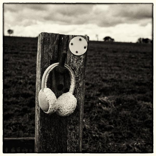 Earmuffs 1 by woolybill1