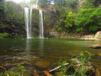 Whangarei Falls 2