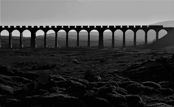 Ribblehead Viaduct by cooky