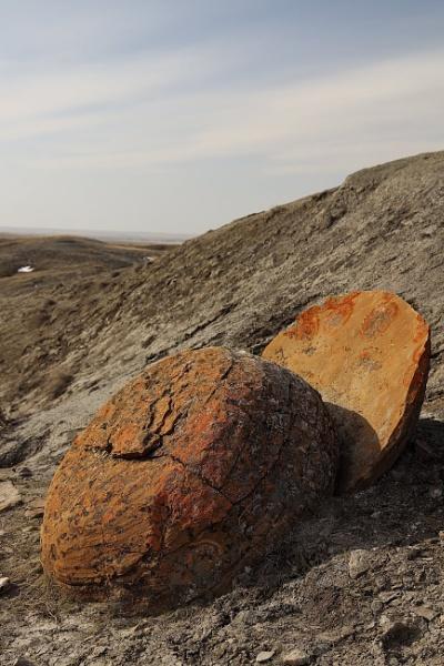 Split rock  in the coulee by waltknox
