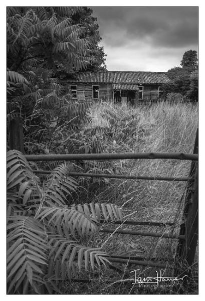 Ruin by IainHamer