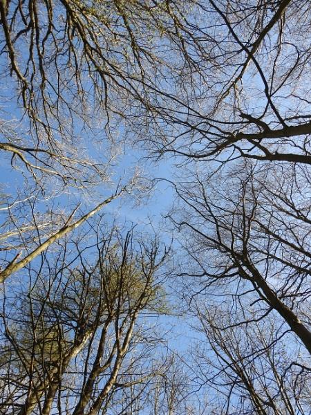 April skies by Alan26