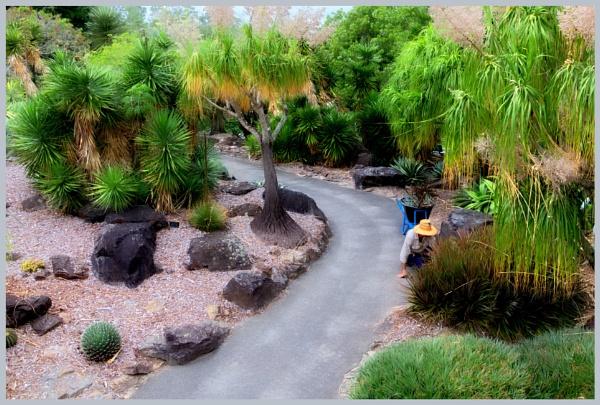 Garden Maintenance by Peco