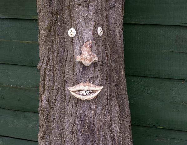 happy tree by madbob