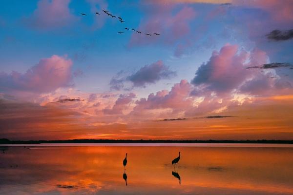 Florida sunset by jbsaladino
