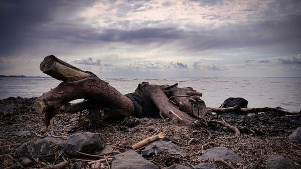 Lough Neagh - Antrim - N.Ireland by atenytom