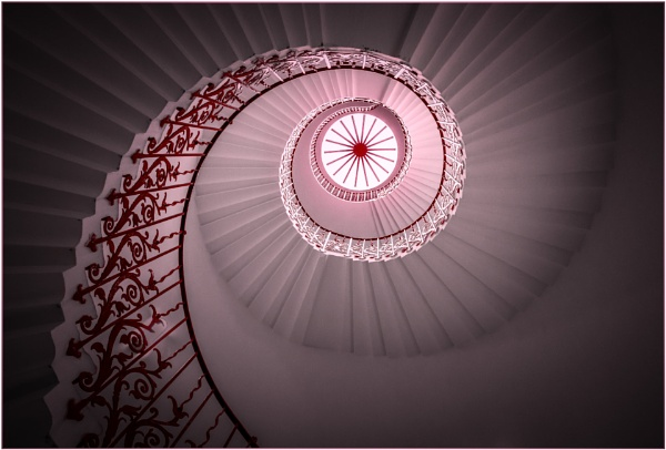 Tulip Stairs by capto
