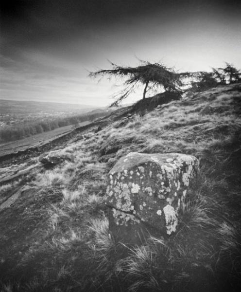 Block & Pine by gerainte1