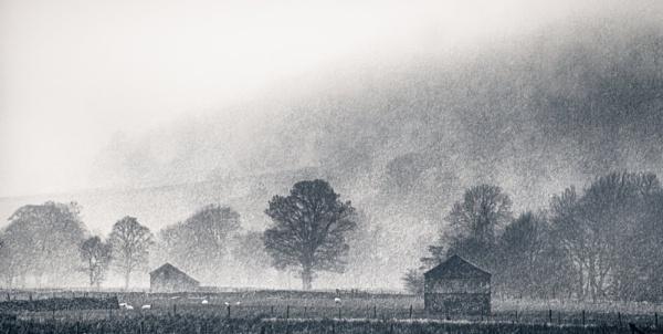 April Showers by gerainte1