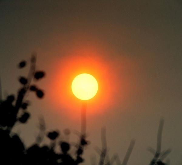 Halo Sun by robertsnikon