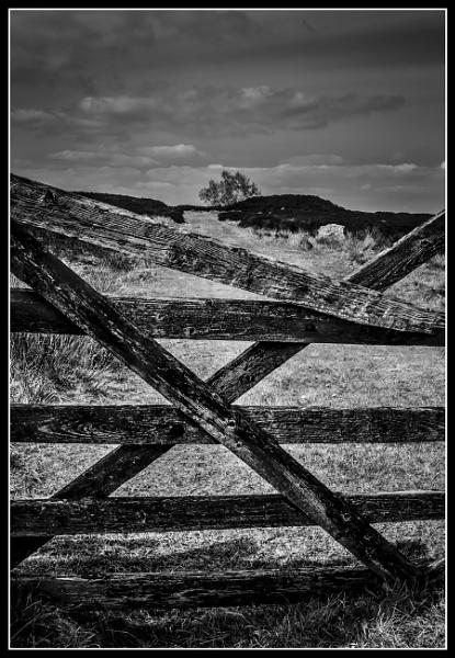 Quarry Lane by Pygar
