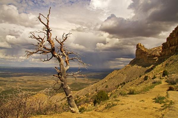 Mesa Verde National Park - Colorado USA by VincentChristopher