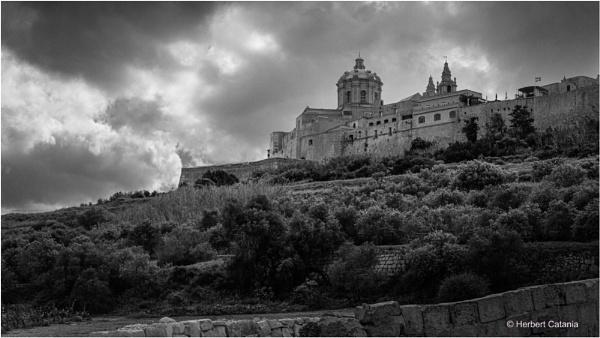 Mdina by Herbert_Catania