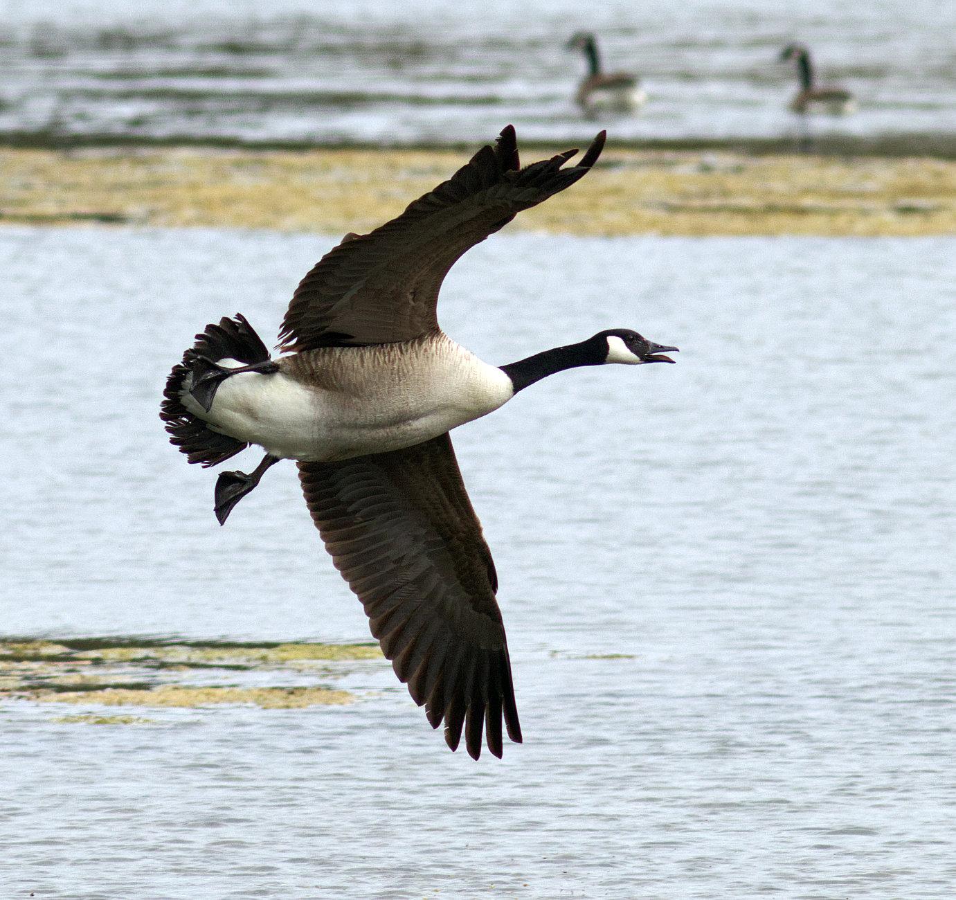 Side slip landing