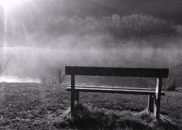 Park Bench - Mono by glyndwr