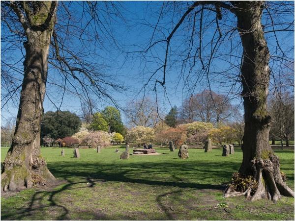 Bute Park & Alexandra Gardens. by franken