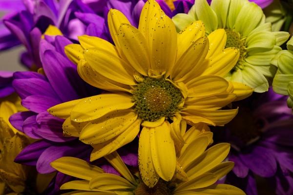 Flower Arrangement by Merlin_k