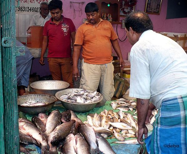 Sodepur Fish Market by debu