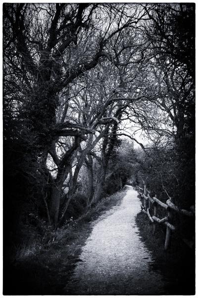 A local Path by RolandC