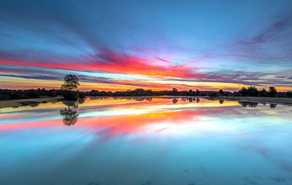 Mirror Mare by NickLucas