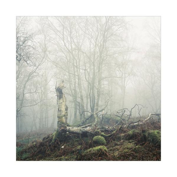 A  Deeper Sadness by gerainte1