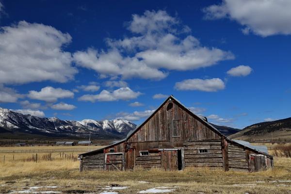 Alberta`s  eastern slopes by waltknox