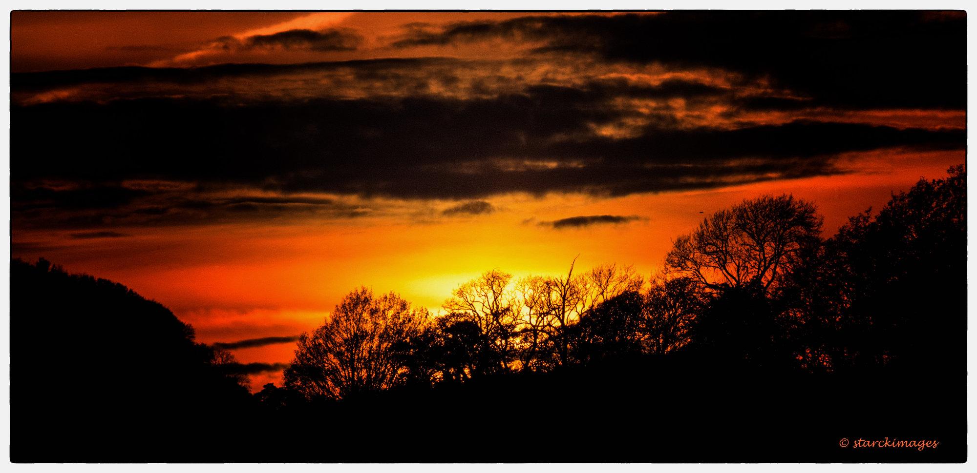 Last Night's Sunset Near Colmer's Hill, Dorset