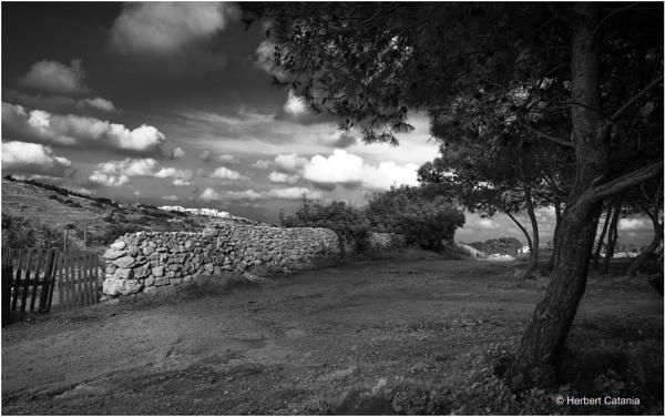 Rubble Wall II by Herbert_Catania