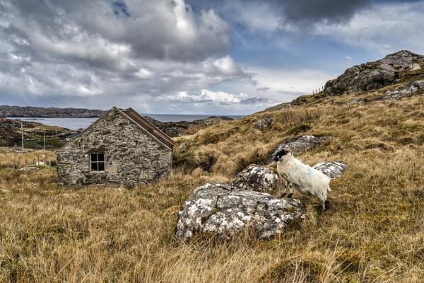 Isle of Harris by AndrewAlbert
