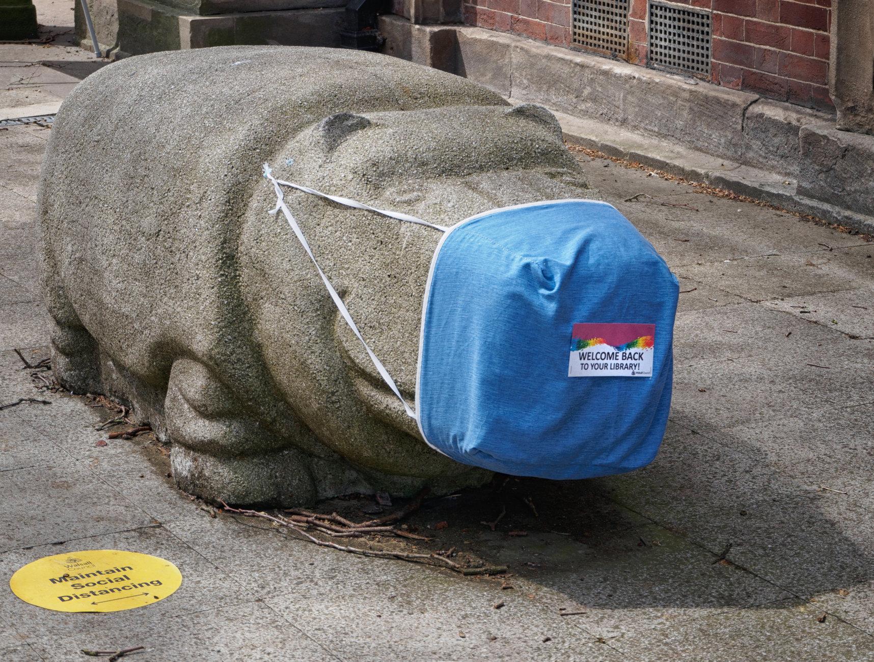 The Sensible Hippo