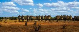 On Safari in Kenya!