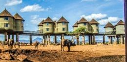 On Safari in Kenya Part2!