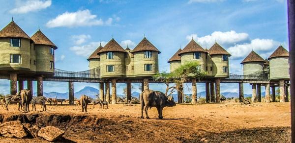 On Safari in Kenya Part2! by AH5310
