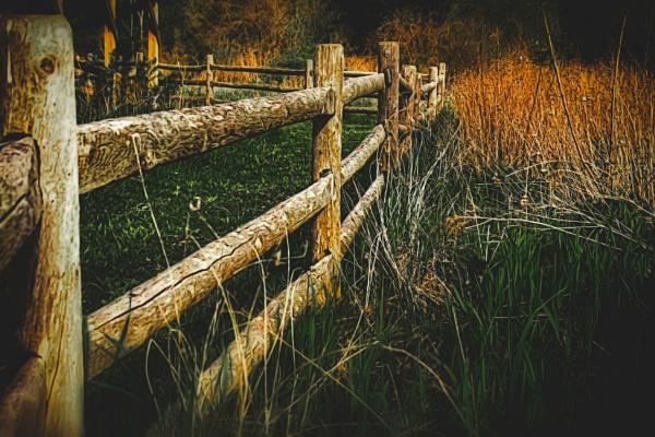 De-fence by manicam