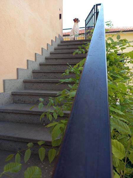 railing....Bacco by laura1