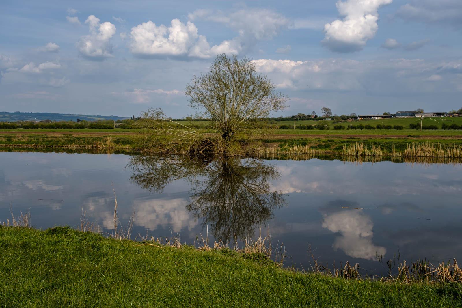 River Avon Reflection