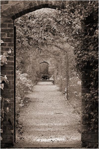 Garden Pathway by johnriley1uk