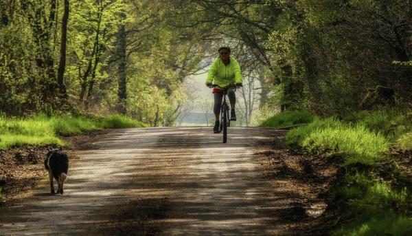 On Yer Bike by BillRookery