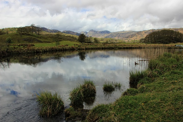 The River Brathay by canoncarol