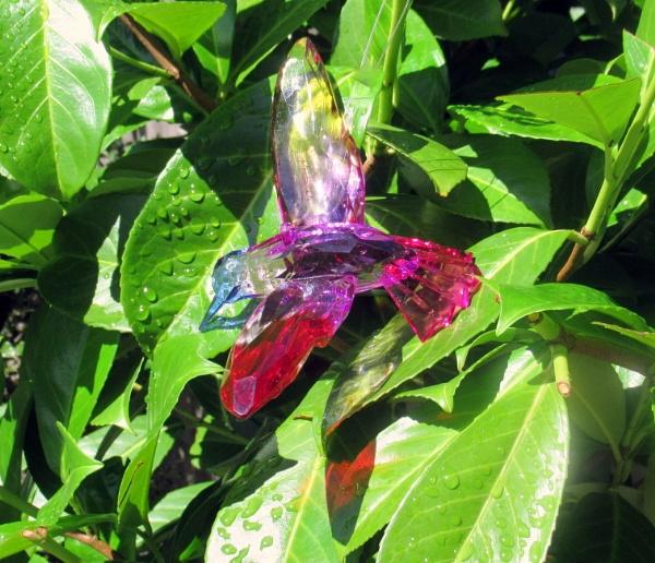 Glass Hummingbird enjoying a drink by Don20
