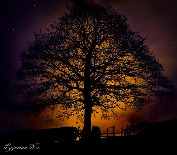 Mystical Moment by Pygar