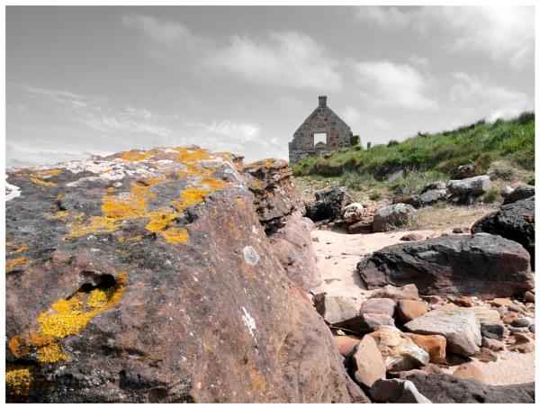 Fife Coastal Path @ Kingsbarnes by hsreid