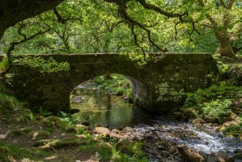 Norsworthy Bridge in spring
