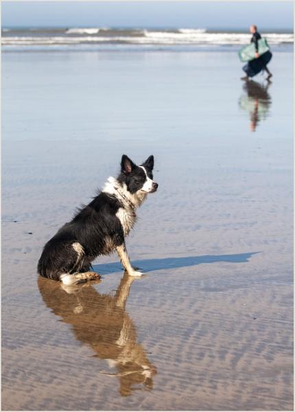 ON THE BEACH !!