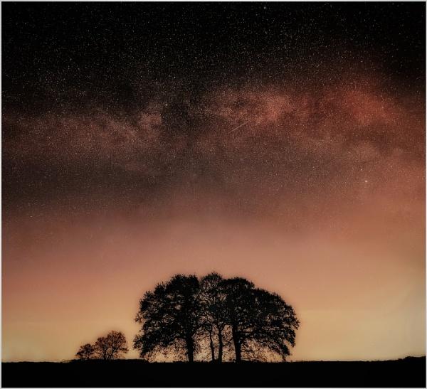 Spring night glow by Carlos9