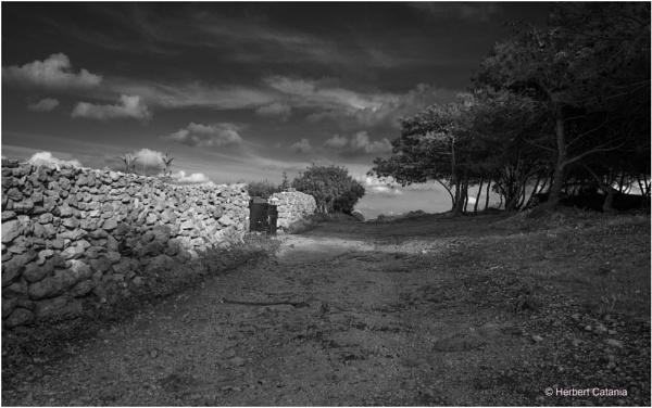 Rubble Wall III by Herbert_Catania