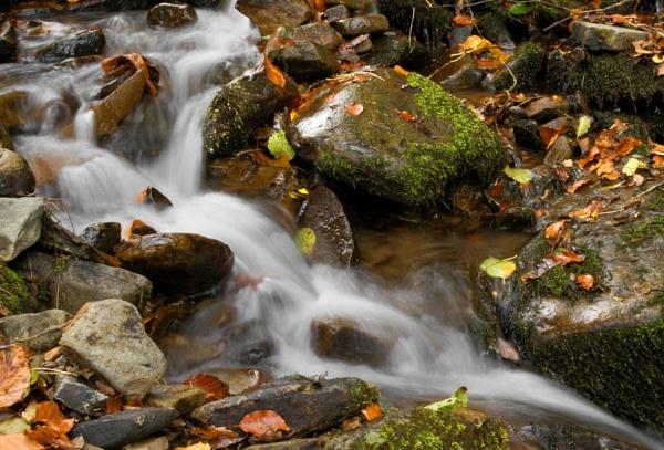 Ffrwd Water Feature by glyndwr
