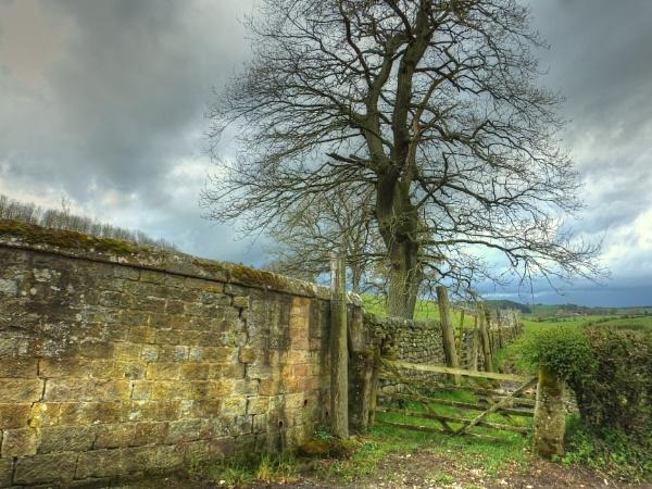 Along The Wall by ianmoorcroft