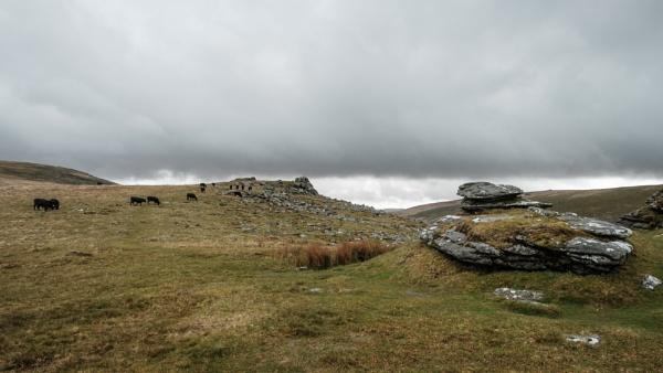 Black a Tor North Dartmoor by topsyrm
